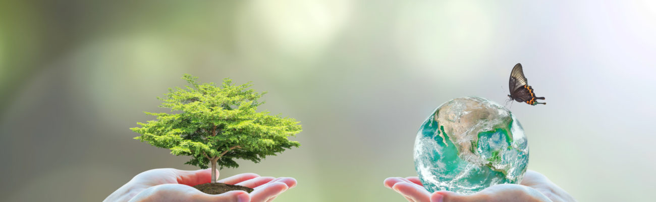 World,Biodiversity,For,Sustainable,Ecological,Environment,,And,Harmony,Living,With